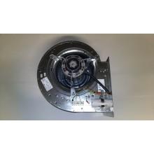 Motore ADF/ED1
